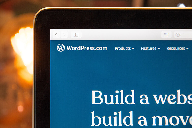 Creating a website on WordPress, installing the necessary plugins
